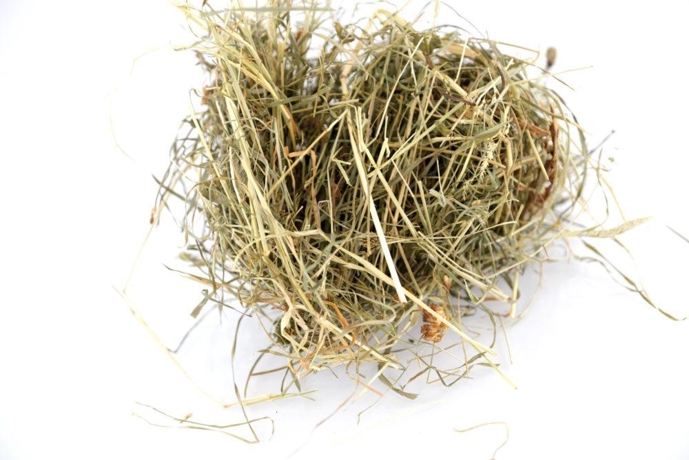 Foin bio pour lapins et rongeurs